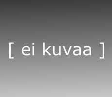 2014-nro-2, avustava-tietotekniikka