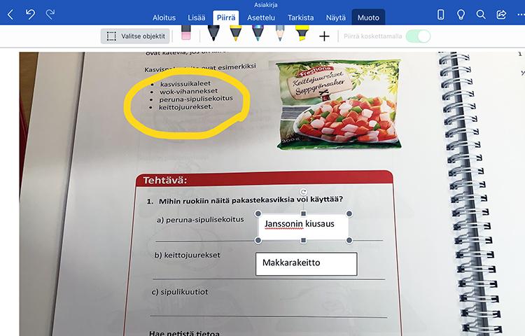 Kuva työkirjan sivusta, minkä ylävalikossa näkyvissä Wordin työkalut.